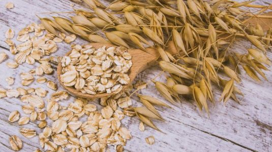 Oats, good for your health |  Gerblé